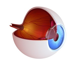Glaucoma Treatment Annapolis
